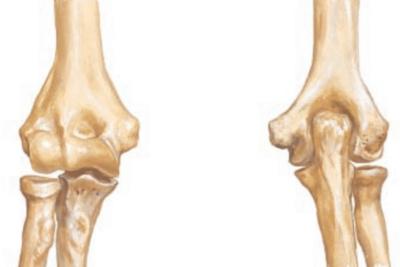 Cursos de osteopatía