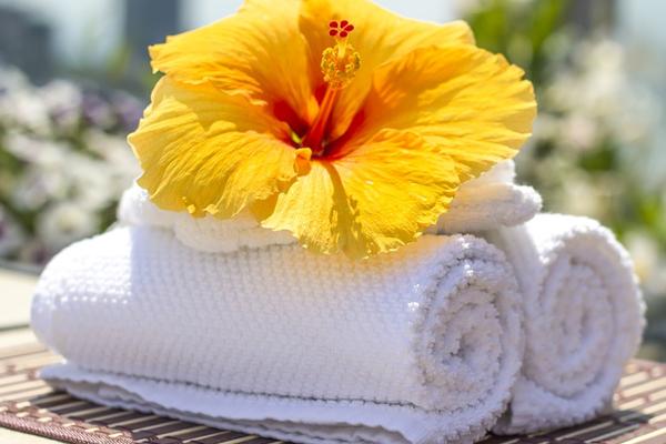 Trabajar de quiromasajista en spa